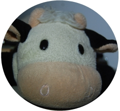 icon-for-moo2-pencil-case1.jpg